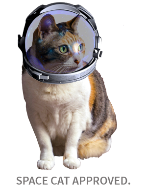 Space Cat approved!